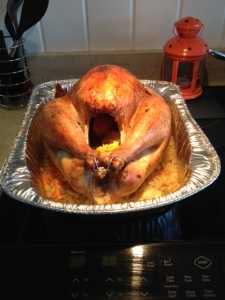 Moving on... I cooked my first turkey. That big life moment was rather uneventful. No one died.